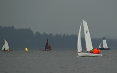 A rainy day on the fjord (Jaedde & Sis) Tags: vm40 hjarbæk sjægte sailing rain weather orange sweep pregamewinner duelwinner