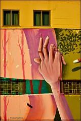 81T_5848aAw8 (tomas teneketzis) Tags: teneketzis tomasteneketzis nikond810 32 color vertical palermo sicily italy walls