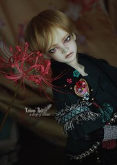 (ladious666) Tags: dollstown ladious bjd doll