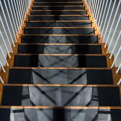 Shadows on the stairs (uneitzel) Tags: gelnder hamburg kaffeebrse lines linien mzuiko1250mm olympusem5 railing schatten shadow speicherstadt stairs treppe square stufen