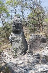O guardio - The guardian (Stella Pado) Tags: brasil gois alto paraso parque nacional da chapada dos veadeiros national park cerrado trilha hiking nature natureza