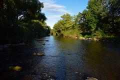 middle of the river (joachim.d.) Tags: nahe river fluss staudernheim rhinelandpalatinate europa europe khl schatten