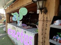 #  #kedi kizz 77 .     #CactusBeach  #aRT (okaykamaci) Tags: art cactusbeach kedi  aydin ay aysel erdek cafe kakts tatlisu