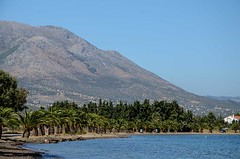 Eretria beach,Chalkis (kutruvis nick) Tags: greece greek hellas evia chalkis eretria beach sea water mountain sky trees palmtrees nik kutruvis nikon d5100