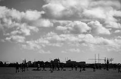 Sunday Morning Football: Phoenix Park, Dublin, Ireland (ciarndoyne) Tags: dublin ireland sunday september morning deer football soccer grass nikon nikond3100 d3100 vsco vscocam cam phoenixpark park