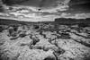 _DSC9692 (Boréalis91) Tags: fontdurles macrofamille vercors marmots voielactã©e