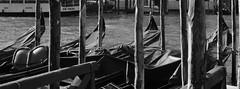 Reflecting on Venice (dellewicki) Tags: venice gondolas