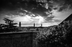 La terrazza - The terrace (Immacolata Giordano) Tags: verona veneto italia italy giardinogiusti tramonto sunset sunlight sunrays nikond7000