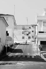 Road in Vejer de la Frontera (Tobia Scandolara) Tags: arcos andalusia spagna espana ruta carretera route routes strade strada via freeway roads road salita blackandwhite pueblo blanco puebloblanco monochrome tobiascandolara tobia scandolara