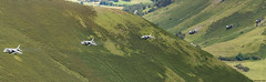 RAF BAe Harrier GR9 ZD435/47 1 Squadron; RAF Cottesmore, Lincolnshire (Michael Leek Photography) Tags: aircraft aeroplane lowlevel lowflying panorama panoramic harrier britishaerospace britishaerospaceharrier harriergr9 gr9 michaelleek michaelleekphotography raf rafcottesmore lincolnshire machloop midwales wales flightpath iconicaircraft historicaircraft 1squadron flight jumpjet nato militaryaviation militaryaircraft militaryjet fastjet fighteraircraft fighterjet sigh fighterbomber groundattack
