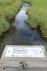 Standpunkt B (HendrikMorkel) Tags: austria family sterreich bregenzerwald vorarlberg sonyrx100iv mountains alps alpen berge barfusswegbizau barefoottrailbizau