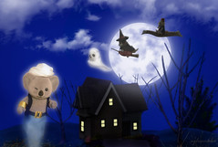 Sylvanian Families - Halloween (Sylvanako) Tags: sylvanian families calico critters halloween spooky ghost witch genie alladin carpet tales story figures flying fly toy toys night moon house lights photoshop