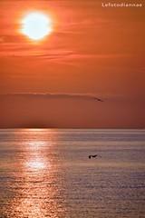 Immagina se vuoi .... (lefotodiannae) Tags: lefotodiannae alba loano liguria mare volo gabniani sole cielo colori mattino atmosfera