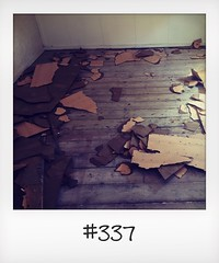"""#DailyPolaroid of 30-8-16 #337 • <a style=""""font-size:0.8em;"""" href=""""http://www.flickr.com/photos/47939785@N05/29773004405/"""" target=""""_blank"""">View on Flickr</a>"""