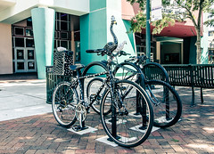 Bird Bike!! (BGDL) Tags: lightroomcc nikond7000 bgdl urban afsnikkor18105mm13556g florida sarasota bicycles art peopleplacesandthings weeklytheme flickrlounge