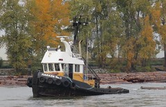 Harken No.9 pulling a log boom up the Fraser River (D70) Tags: mmsi 316018604 flag canada ca tug length overall x breadth extreme 11m  6m draught 3m speed recorded max average 11 77 knots harken no9 278366