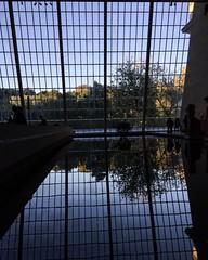Dendur Atrium (nydavid1234) Tags: nydavid1234 iphone architecture atrium shadows reflection water museum metropolitanmuseumofart newyork landmark touristattraction trees glass reflectionswindows