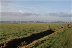 towards the village (Elly Snel) Tags: ameland eiland island nl meddow weide rural wolken clouds village dorp