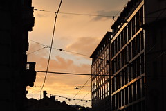 Close your eyes (]alice[) Tags: city citt bologna ciudad ville tramonto sunset yellow giallo amarillo sky ciel cielo building exposure urban street streetphotography exploring