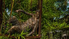 Jour de peine (Fred&rique) Tags: lumixfz1000 photoshop cameraraw france seineetmarne barbizon sculpture statue cage homme souffrance peine prison bambou végétaux extérieur art