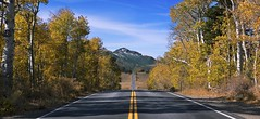 On the Road (Wills767) Tags: nikon d610 nature landscape day daytime mountain mountains road highway california aspens fall autumn trees nikkor 105mm panorama