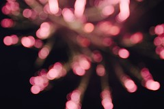 Sparkle Cherry Blossom (tatsuya.ouchi) Tags: pink lights ball fireworks abstractart losangeles art color bright vivid spread soft softfocus canon night nightphotography fire flowers graduation starry sparkle twinkle longexposure cherryblossom pattern texture