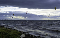 Exciting storm winds (Tony Tomlin) Tags: whiterockbc whiterockbeach britishcolumbia canada windsurfers kitesurfing kite waves oces boundarybay