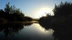 Conejo Creek Sunrise (ZAbbey72) Tags: nature outdoors conejo creek water stream reflection morning sunri mist fog sky california venturacounty