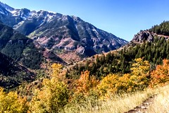 Hiking on a weekend in Utah (kc_hoang) Tags: utah worldtravel worldwidelandscapes hiking foliage autumn kodakmoment travelplanet sightseeing tamminhphotography lifeelevated activelifestyles