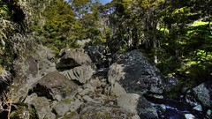Wairere Boulders Nature Park (Julie V. Simpson Photographer) Tags: wairerebouldersnaturepark basaltrocks newzealand nzbush trees ferns