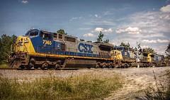Where's Waldo (builder24car) Tags: railfanning benchingthefreights perspective whereswaldo csx csx7365 csx247 c408w ac44cw sline hoffmannorthcarolina