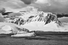 Dorian Bay (naturalturn) Tags: ice bergybit glacier cliff mountain mountains snow infrared blackwhite blackandwhite dorianbay dorian bay palmerarchipelago antarctica image:rating=5 image:id=190801