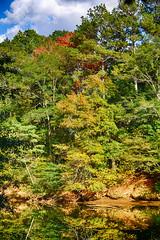 DSC06535-37_HDR (Capt Kodak) Tags: autumn chattahoocheerivernationalrecreationarea fall hdrefexpro2 madefrom3images medlockbridgepark nationalparkservice nikcollectionbygoogle niksoftware photomerge