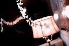 Practice Space String Lights (K. McMahon) Tags: carroll christmas christmaslights electronics garfield garfieldpark lamp light lights luz music park posters practice side space stringlights west westside wright wrightoncarroll
