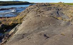 Gletscherschliff (Thomas Berg (Cottbus)) Tags: borgarnesi geo:lat=6458568600 geo:lon=2199427800 geotagged isl island jarlangsstair gletscherschliff detersion iceland islanda