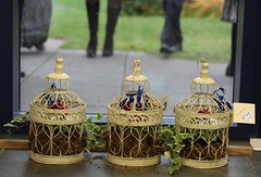 Gifts for the family (Joybot) Tags: wedding white plant birdcage ivy gift present ornate planter weddingday motherinlaw