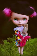 harlequin girl