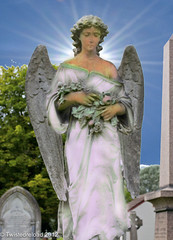 White Angel (Twistedreload) Tags: cemeteries art cemetery victorian angels