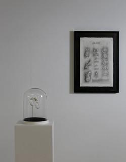 Daniel Tejero - La Posta Fundación