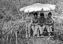 Late One Morning on a Bench Under a Toadstool (ricko) Tags: toadstool fungi mushroom women riviters grass bw photocutout 230366 2016
