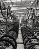 At Decathlon. (Sangeeth Santhosh) Tags: decathalon mtb bicycle cycle sportscycle blackandwhite monochrome black white grey warehouse showroom creative betweenbicycles btwin offroad mountainbikes biking bikeride riding tyre rim spoke sportsbicycle sportsbike sports hiking adventure