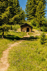 Take The Path (BradPerkins) Tags: abandonedtown ghosttown ghost montana abandoned abandonedbuilding garnet