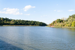Down by the River (juliafrenchfrey) Tags: turningpointpark rochester rochesterny roc nature water river geneseeriver genesee