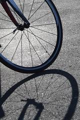 Shadow of Travels (Nick Fewings 4.5 Million Views) Tags: travel spokes shadow wheel bicycle