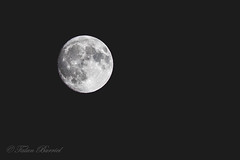 Lluna (Talan Burriel) Tags: moon luna black white blanco negro nubes clouds nit noche night lluna canon 5ds 70200