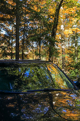 Camouflaged Car  (Creative Challenge:Autumns Pallette) (Note-ables by Lynn) Tags: fallcolours fallseason cars refelction nature camouflage