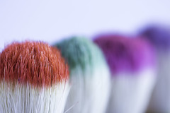 277/366: The brush off (judi may) Tags: 366the2016edition 3662016 day277366 3oct16 macro macromonday macromondays colour colourful vibrant brushes details texture red green pink purple canon7d dof depthoffield inarow