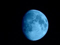 Blue moon (NikoGogol) Tags: bluemoon gogol jazz