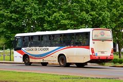 104 (American Bus Pics) Tags: caador