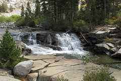 Piute Creek from the Piute Creek Canyon Trail, California (jlcummins - Washington State) Tags: johnmuirwilderness backpack california inyonationalforest sierranevadamountains hike piutecreek piutecanyon creek water